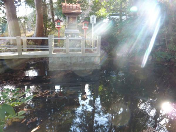兵庫県 心霊スポット 鷲林寺(じゅうりんじ)の弁天池