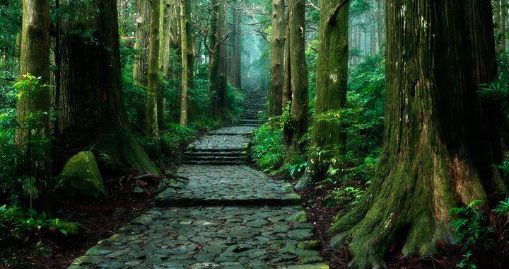 奈良県 心霊スポット 熊野古道(谷瀬の吊り橋付近)