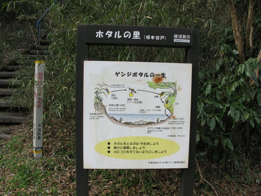 神奈川県 心霊スポット ほたるの里