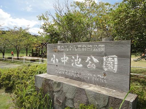 千葉県 心霊スポット 小中池公園