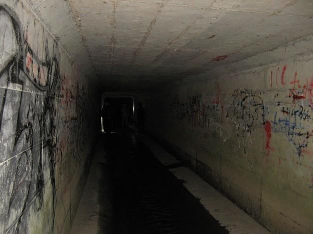 大阪府 心霊スポット ゴーゴートンネル(大蓮池)