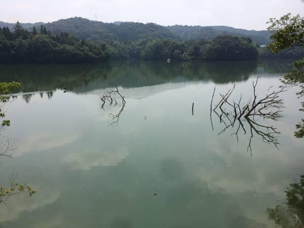 山口県 心霊スポット 小野湖