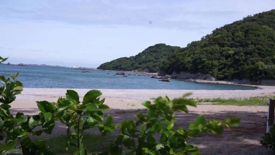 徳島県 心霊スポット 大神子海岸(おおみこかいがん)